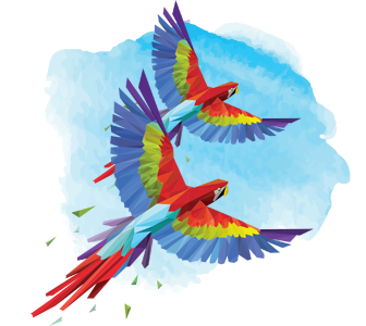Scarlet Macaws Mate